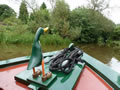 Manchester Excurions - Wandering Duck Canal